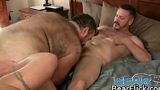 Gay bears sharing cock and hot cum gay porno